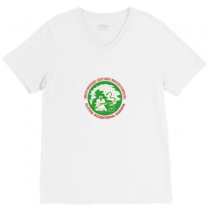 King Gizzard And The Lizard Wizard V-neck Tee Designed By Tasha