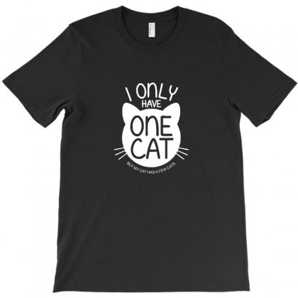I Only Have One Cat My Cat Has A Few Cat T-shirt Designed By Ismi
