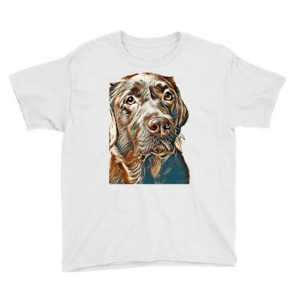 Brown Labrador Dog In Front Of A Colored Background Youth Tee Designed By Kemnabi