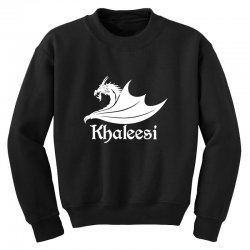 dragons will be dragons Youth Sweatshirt | Artistshot