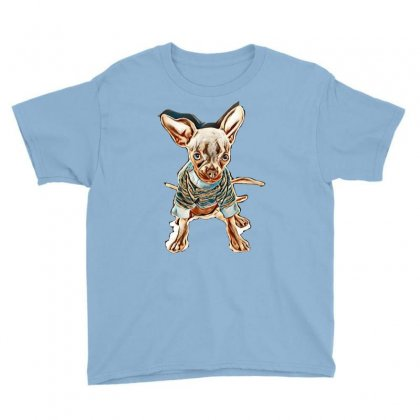 Our 4 1/2 Month Old Rescue Chihuahua Named Chilli. Blue In Colour. Wea Youth Tee Designed By Kemnabi