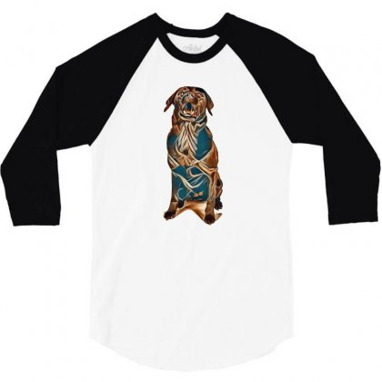 Funny Black Labrador Is Sitting In The White Studio And Catching Flyin 3/4 Sleeve Shirt Designed By Kemnabi