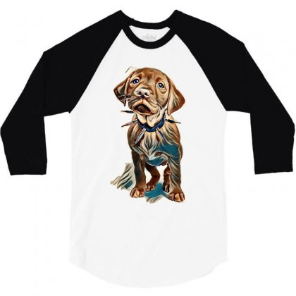 Fox Red Labrador Puppy Wearing A Spikey Collar Standing In A White Set 3/4 Sleeve Shirt Designed By Kemnabi