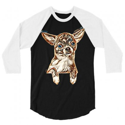 Cute Chihuahua Puppy Above Banner, Isolated On White Background. Baby 3/4 Sleeve Shirt Designed By Kemnabi