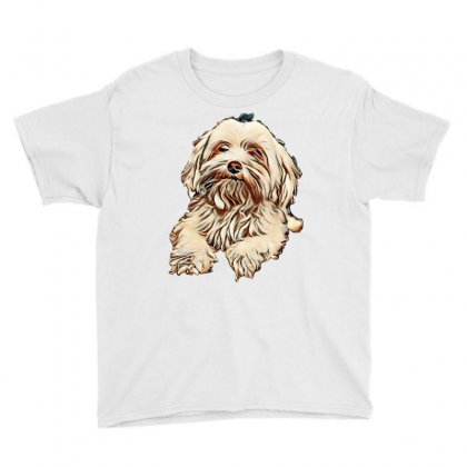 Maltese Bichon Dog With Black Background Youth Tee Designed By Kemnabi