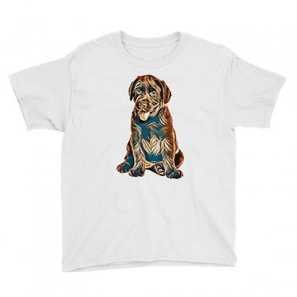 Chocolate Labrador Retriever Puppy On White Background Youth Tee Designed By Kemnabi