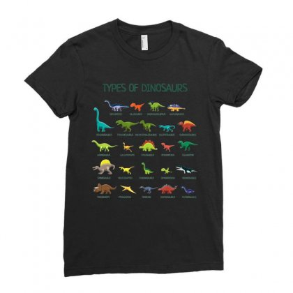 Kids Types Of Dinosaurs T Shirt Dino Identification Tee Ladies Fitted T-shirt Designed By Nhan