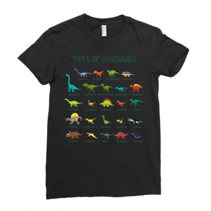Kids Types Of Dinosaurs T Shirt Dino Identification Ladies Fitted T-shirt Designed By Nhan