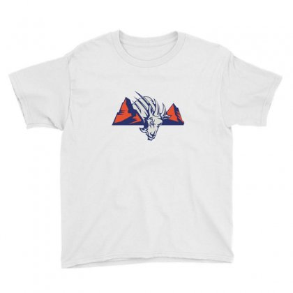 Blue Mountain State Logo Youth Tee Designed By Agus Loli