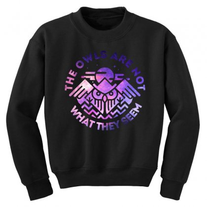 The Owls Are Not What They Seem Youth Sweatshirt Designed By Artdesigntest