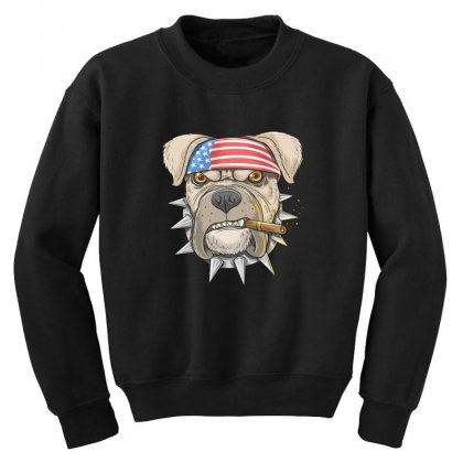 Usa Dog Youth Sweatshirt Designed By Disgus_thing