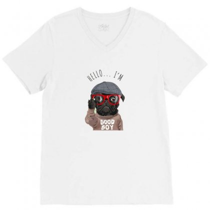 Dog Good Boy V-neck Tee Designed By Disgus_thing
