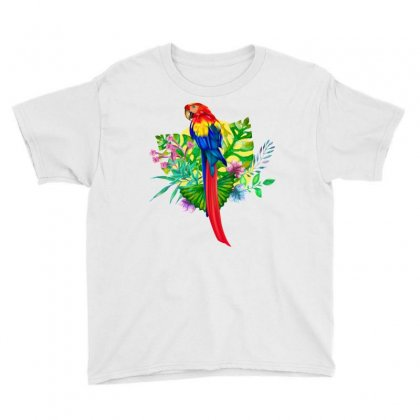 Colorful Macaw Youth Tee Designed By Tiococacola