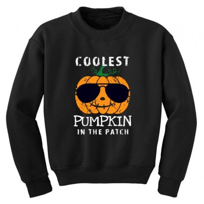 Funny Halloween Coolest Pumpkin In The Patch Youth Sweatshirt Designed By Pinkanzee