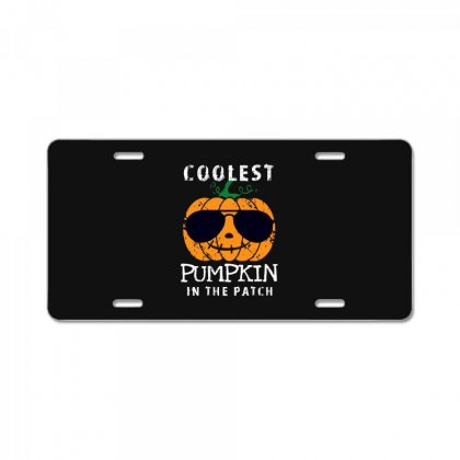 Funny Halloween Coolest Pumpkin In The Patch License Plate Designed By Pinkanzee