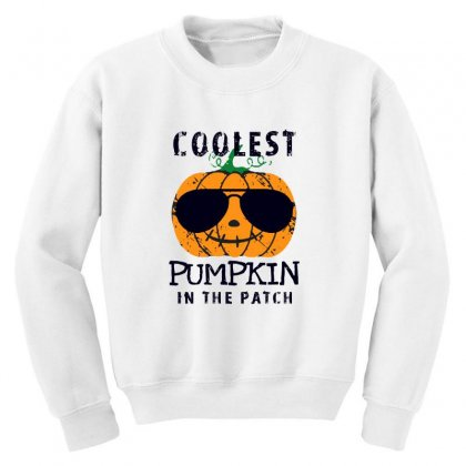 Coolest Pumpkin In The Patch Funny Halloween Youth Sweatshirt Designed By Pinkanzee