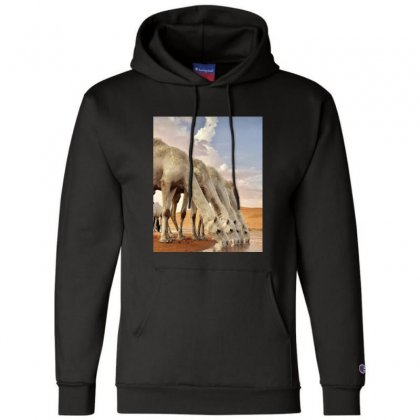 Bd32dbf4 20d3 45df Bec6 91d386e6f0a4 Champion Hoodie Designed By Perfect