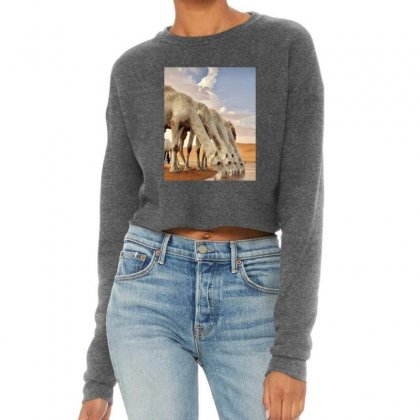 Bd32dbf4 20d3 45df Bec6 91d386e6f0a4 Cropped Sweater Designed By Perfect