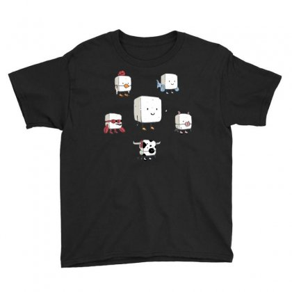 Tofu, Food's Master Of Disguise Youth Tee Designed By Dameart