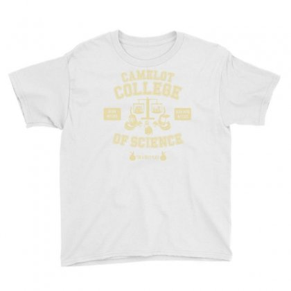 Wise In The Ways Of Science Youth Tee Designed By Dameart
