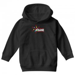 i am not insane inspired by the big bang theory, ideal birthday Youth Hoodie | Artistshot