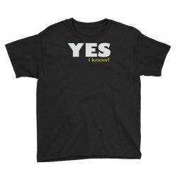 yes i know Youth Tee | Artistshot