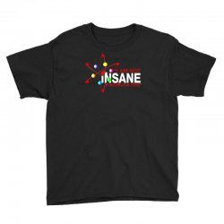 i am not insane inspired by the big bang theory, ideal birthday Youth Tee | Artistshot
