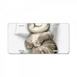 CAT SLEEPING License Plate | Artistshot