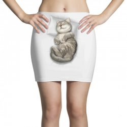 CAT SLEEPING Mini Skirts | Artistshot