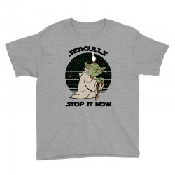 seagulls stop it now Youth Tee | Artistshot