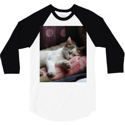 Top Of Cat In The World Is Hanger 3/4 Sleeve Shirt Designed By Amr