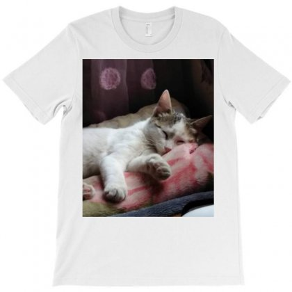 Top Of Cat In The World Is Hanger T-shirt Designed By Amr