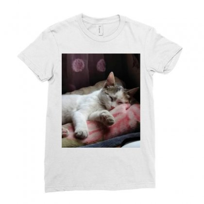 Top Of Cat In The World Is Hanger Ladies Fitted T-shirt Designed By Amr