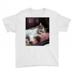 Top of cat in the world is hanger Youth Tee | Artistshot