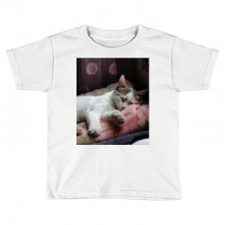 Top of cat in the world is hanger Toddler T-shirt | Artistshot
