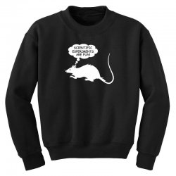 rat funny geek nerd scientific experiments are fun Youth Sweatshirt | Artistshot
