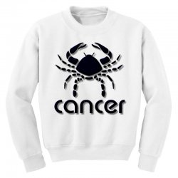 cancer Youth Sweatshirt | Artistshot