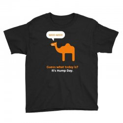 hump day camel Youth Tee | Artistshot