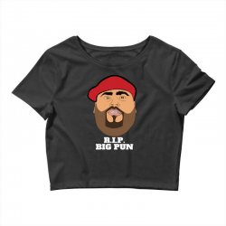 Rip big pun Crop Top | Artistshot