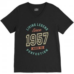 Since 1957 Aged To Perfection V-Neck Tee | Artistshot