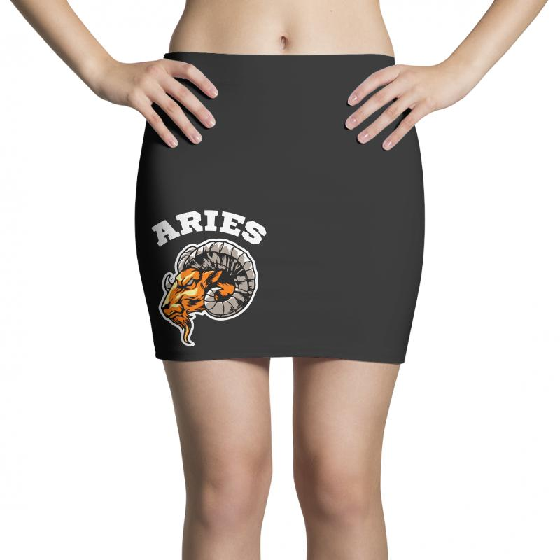 Aries Mini Skirts | Artistshot