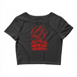 burn the skull Crop Top | Artistshot