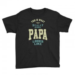 Really Cool Papa Youth Tee | Artistshot