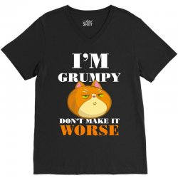 i'm grumpy don't make it worse V-Neck Tee | Artistshot