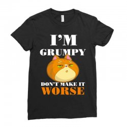 i'm grumpy don't make it worse Ladies Fitted T-Shirt | Artistshot