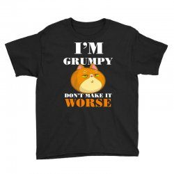 i'm grumpy don't make it worse Youth Tee | Artistshot
