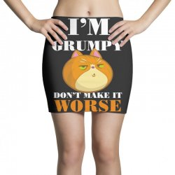 i'm grumpy don't make it worse Mini Skirts | Artistshot