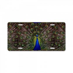 blue and green peacock License Plate | Artistshot