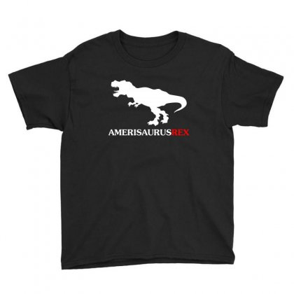 Dinosaur 4th Of July Amerisaurus T Rex T Shirt Youth Tee Designed By Hung
