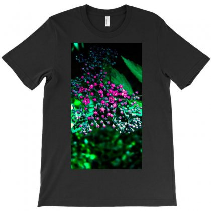 Flowers T-shirt Designed By Harry